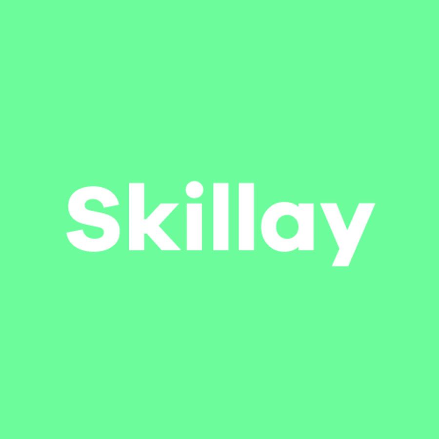 Skillay Academy - Consultant