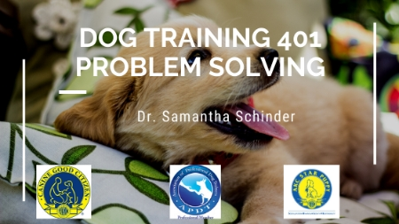 Dog Training 401 Problem Solving