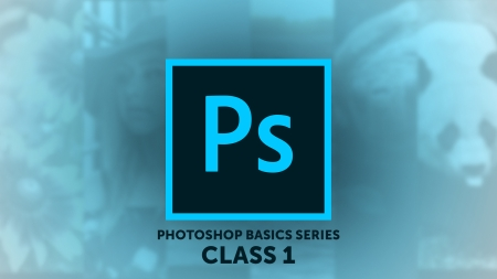 Photoshop Basics Series Class 1: Navigating Photoshop